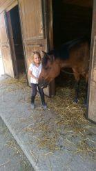 Valentina e i cavalli