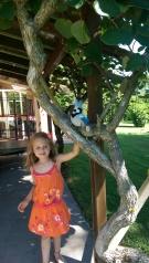 Valentina con uccelli giocattolo